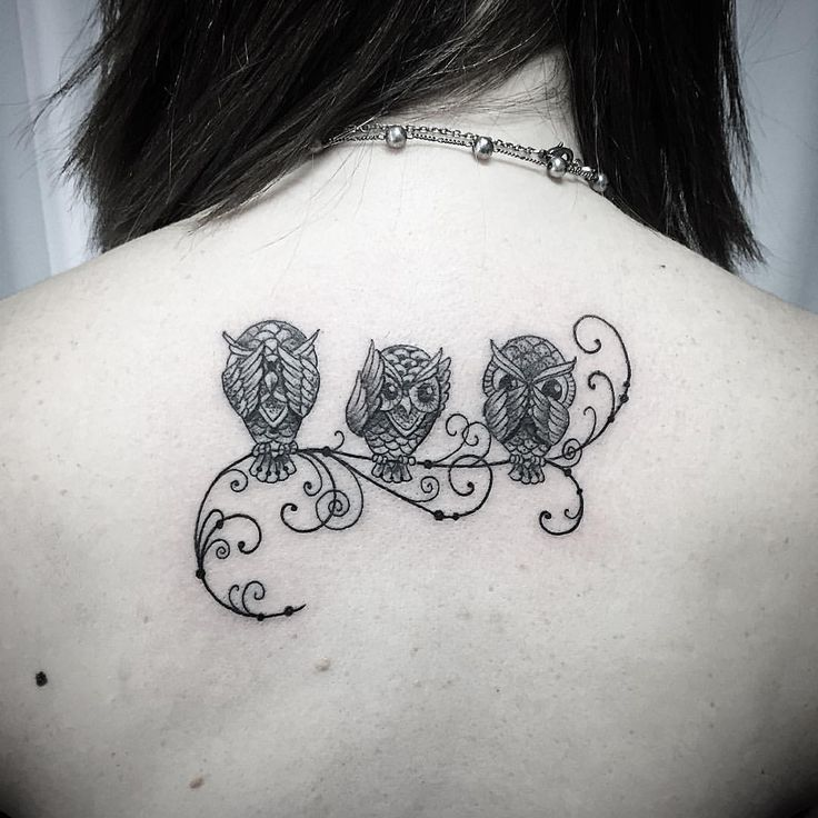 50 Of The Most Beautiful Owl Tattoo Designs And Their: Cute And Small Owl Tattoo Design (2)