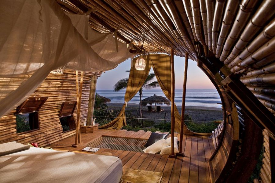 beautiful beachside treehouse hotel