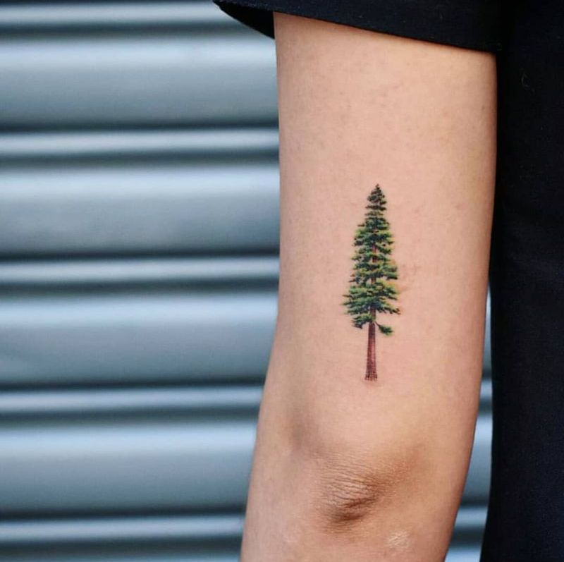 creative tree tattoo ideas